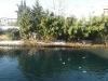 Portogruaro - 18 Dic 2010